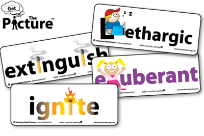 4 example cards from Get the Picture Antonym vocabulary cards: Lethargic, Exuberant, Extinguish, Ignite